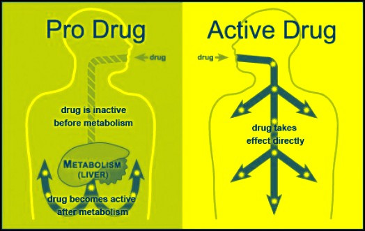 Understanding PRO Drugs | AuroBlog | Clinical Research Blog ...