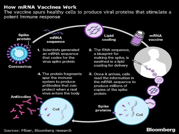 Covid-19 vaccines raise hope for cancer, throw open new field of medicine