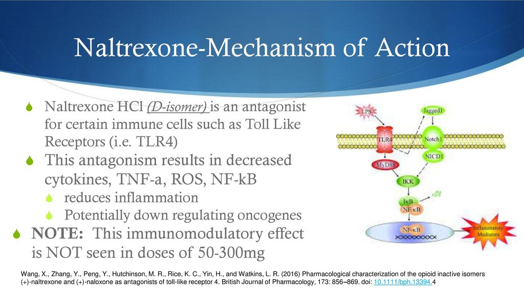 LDN Low Dose Naltrexone - ppt download