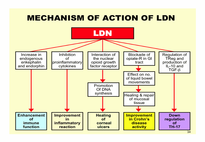 LDN mechanism of action.png